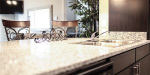 Furnished Countertops